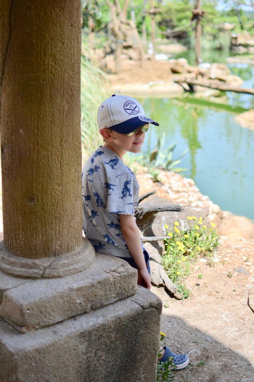 Lagos Zoo, min lilla tuffing Adrian
