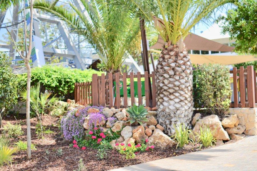 Zoo Marine, palmer och blommor